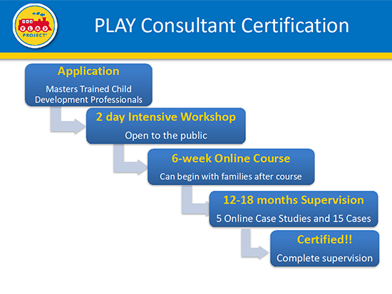 play project consultant certification process | the play project